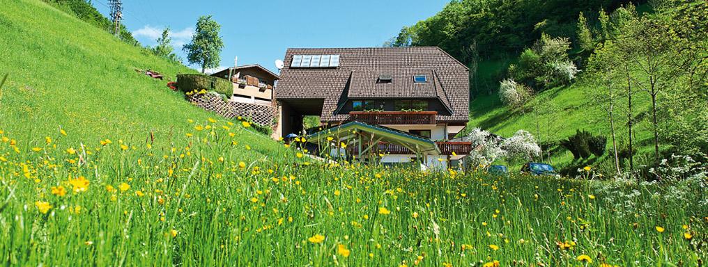 wandern ferienwohnung haus wilde rench familie huber bad peterstal griesbach schwarzwald. Black Bedroom Furniture Sets. Home Design Ideas